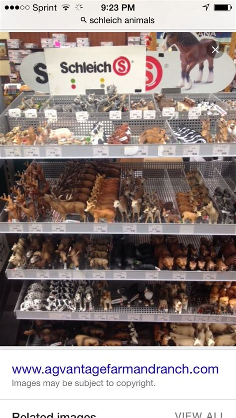 Schleich animals--I've found at Toys R Us and Walmart (she